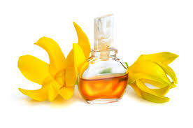 Benefits Of Ylang Ylang Essential Oil For Hair - Scratch Mommy